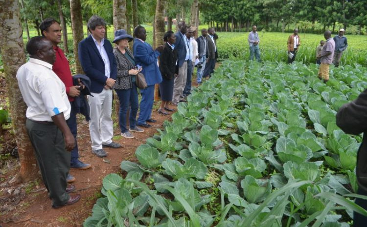 Government secures funding to train farmers on safe food production