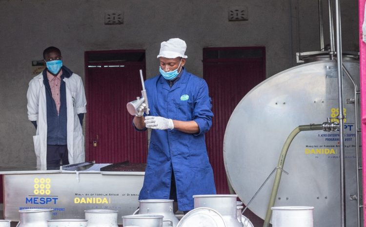 MESPT Signs Contract With DANIDA To Execute Kes. 1 Billion Programme