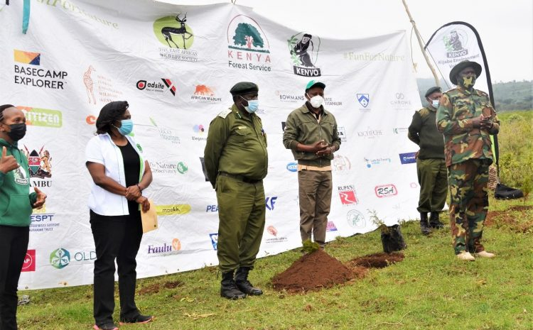 The Forest Challenge 2019 Edition Organizers and Corporate Partners Stage a Joint Tree Planting Exercise!