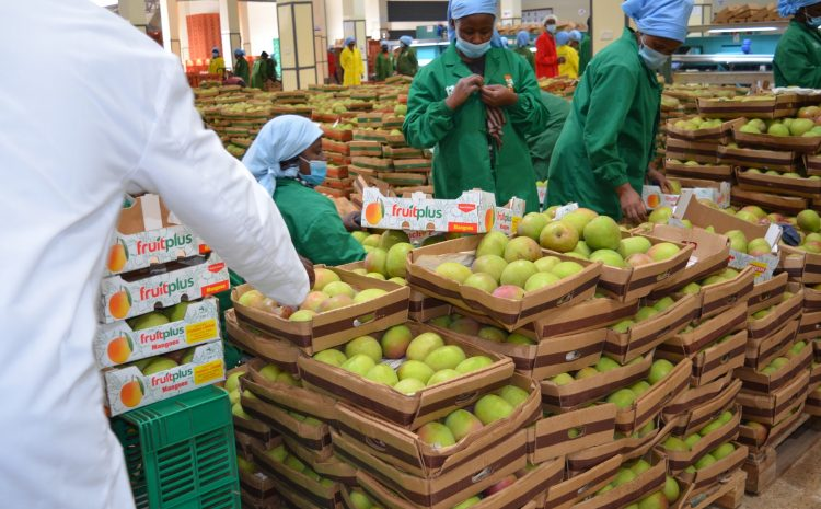 World Food Safety Day -How AgriFI implementation align to 2021 call to action