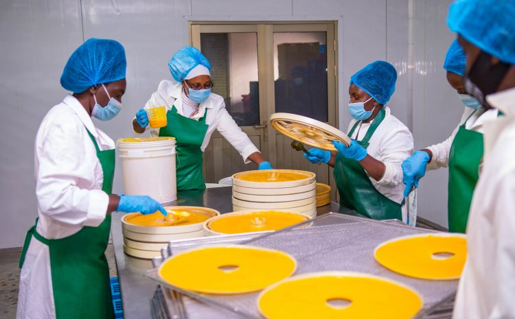 World Food Safety Day 2021 -Government keen to ensure food safety